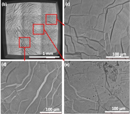 Optical images of samples