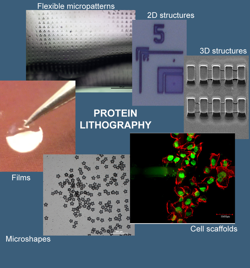 Diagram of Protein Lithography