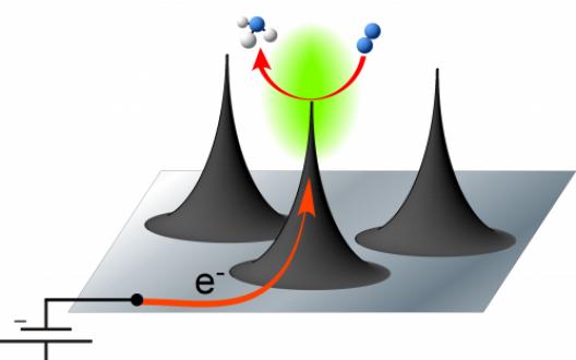 Diagram of nanospikes